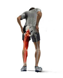 Leg Pain with Bones image 2